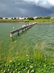 Crosby Coastal Park (brimidooley) Tags: crosby liverpool england merseyside uk greatbritain city citybreak travel sightseeing seagulls water angleterre engeland inghilterra inglaterra anglia sefton unitedkingdom 英国 イングランド britain