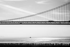 One Morning in San Francisco (Thomas Hawk) Tags: america bayarea baybridge california sf sfbayarea sanfrancisco usa unitedstatesofamerica westcoast bridge bw fav10 fav25 fav50 fav100