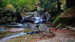 the voice of the forest / 231217402 (devadipmen) Tags: autumn bursa forest kaya landscape landscapephotographer naturepark naturephotographer orman rock sonbahar suuçtuwaterfall suuçtuşelalesi türkiye waterfall şelale