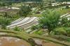 Jati Luwih (monojussi) Tags: bali jatiluwih indonesia subak terraces