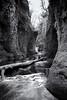 Barrier (stephen cosh) Tags: leicammonochromtyp246 lochlomond blackandwhite devilspulpit landscape leica35mmsummilux loch monochrome scotland stephencosh