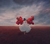 Spread Your Wings (Deltalex.) Tags: alexbenetel balloons conceptual portrait selfportrait tribute death life afterlife nikon nikond600 australia sydney photographer photography grass sky sunset whitedress