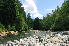 045 (RD1630) Tags: goldenearsprovincialpark britishcolumbia canada nature natur forest creek water sky outside outdoor holiday kanada america north vancouver