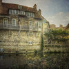 Casa en el rio Cam, Cambridge (Marina Is) Tags: casaenelrio riocam camriver agua water arbol river rio cambridge inglaterra england