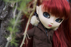 Playing hide and seek (Erla Morgan) Tags: doll pullip pulliprida rida victoria erlamorgan groove junplanning red redheads blue eyes pale spy russian wig obitsu field