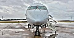 Envoy Air CRJ-700 (Jay Joseph) Tags: aviation aircraft flight airport crj700 canadair regional jet americaneagle envoyair regionaljet airside ramprat diversion