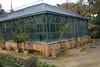 Giardino d'Inverno (Victoria Lea B) Tags: hothouse conservatory palermo sicily italy giardinodinverno wintergarden botanicalgarden greenhouse ortobotanico