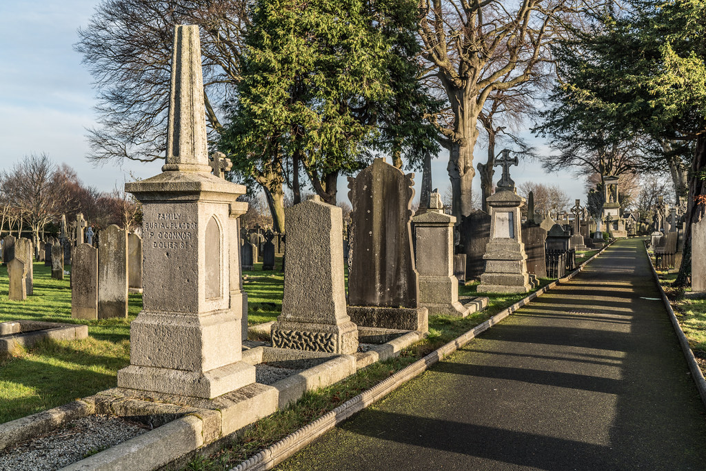 VISIT TO GLASNEVIN CEMETERY IN DUBLIN [FIRST SESSION OF 2018]-134931