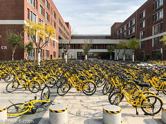 171028 Nankai University Jinnan campus, Tianjin.jpg (Bruce Batten) Tags: trees locations nankai bicycles trips occasions vehicles subjects campuses buildings tianjin shadows businessresearchtrips china plants tianjinshi cn