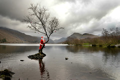 Famous lone tree....lonely Santa! (PentlandPirate of the North) Tags: llynpadarn lonetree claus fatherchristmas snowdonia llanberis baubles lake reflection funrememberthat santa northwales freak weird nobaublesanymore hohoho selfie smile