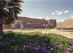 Bam - Iran (wietsej) Tags: bam iran historical site archeology minolta 9xi film analoog srl landscape