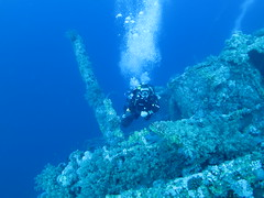 The sea takes over (roger_forster) Tags: wreck numidia steamship ss bigbrother island reef coral underwater diver diving naturallight scuba redsea egypt