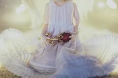 roses for jonghyun (hauntiing) Tags: pullip dal cinnamoroll angel rose