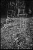 tomoato cages, dried grasses, neighborhood, West Asheville, North Carolina, FED 4, Arista.Edu 200, Moersch Eco Film Developer, mid November 2017 (steve aimone) Tags: tomatocages yard neighborhood driedgrasses linearity linearmovements lines westasheville northcarolina fed4 soviet rangefinder 35mm film aristaedu200 moerschecofilmdeveloper blackandwhite monochrome monochromatic