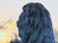 Blue Lion at Dawn (Paul Henegan) Tags: montaukny yule availablelight blur dawn highlights morninglight selectivefocus shadows statue