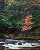 Falls River Colors (Kevin Pihlaja) Tags: fallsriver autumn fallcolors upperpeninsula michigan trees foliage river stream landscape nature forest woodland waterflow
