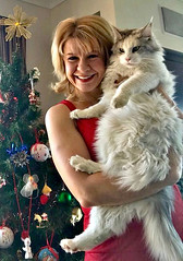 Elaine and 'Narla' (Maine coon) - family members (Mary Faith.) Tags: cat pet maine coon breed fluffy large narla white
