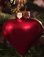 Heart, the symbol of Love ♥ (evakongshavn) Tags: redux2017myfavoritethemeoftheyear redux2017 macromondays heart macroshot macrounlimited mondaymacro happymacromondays macromonday macro happymacromonday makro makroaufnahmen xmasdecorations christmasdecoration christmasdecorations love red hmm mm blahblahscape