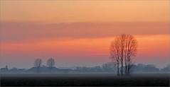 sunset atmosphere (daaynos) Tags: sunset atmosphere hoeksewaard dehoekschewaard holland netherlands landscape landschap trees