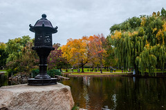 Boston Public Garden (Chen Yiming) Tags: newengland northeastern eastcoast boston massachusetts publicgarden lake