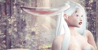 📷Lost in Wonderland