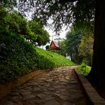 Wat Phnom 1 2017 full_DSC4712 thumbnail