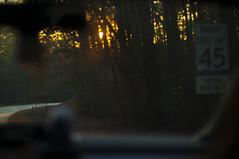 Road Trip (Stephen Beadles) Tags: north carolina asheville blueridge parkway roadtrip sunset road woods forest sun golden hour stephen beadles