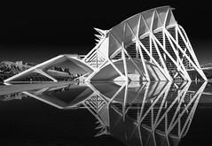Museu de les Ciències Príncipe Felipe (horizontal) ({heruman}) Tags: museu de les ciències príncipe felipe horizontal valencia spain germanvidal mono monochrome black white nikon d750 1635 f4