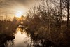 Wintertime 1 (janmn76) Tags: cold winter greenwinter sun sunset frosty utterslevmose december lowsun naturephotography nature water reflections nikon nikonphotography d7200 tamron opdagdanmark visitdenmark skies