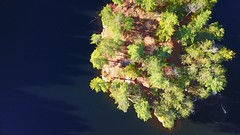 vixen lake (thehighfield) Tags: drone arial ariel trees island lake