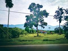 Sungai Bil - Kampung Sungai Bil - http://4sq.com/edfpoo #travel #holiday #nature #Asian #Malaysia #travelMalaysia #holidayMalaysia #Perak #slimRiver #大自然 #旅行 #度假 #亚洲 #马来西亚 #马来西亚度假 #马来西亚旅行 #发现马来西亚 #霹露 #trees #树木 #mountain #山 #河 #River