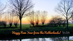 Happy New Year from the Netherlands!   0377 (HereIsTom) Tags: webshots travel europe netherlands holland dutch view nederland views you sony cybershot hx9v nature sun tourists cycle vakantie fietsvakantie cycling holiday bike bicycle fietsen jaar new 2017 gelukkig happy 2018 trees zon year nieuw healthy thank old good fireworks and things 新年快樂 feliz frohes nuevo año bonne année neues jahr 新年 新年好