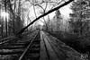 End of the Line (sleepnever) Tags: rail railroad trestle bridge traintracks tracks millpond historical bw blackandwhite nature landscape 1635f4 robertwatts