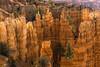 Bryce Canyon (garshna) Tags: brycecanyon hoodos trees