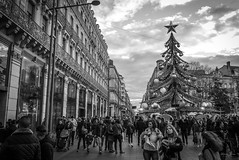 Toulouse (Shane Jones) Tags: toulouse street people crowd shoppers christmas tree building france panasonic lumixlx100