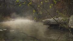 Cauldron (keith_shuley) Tags: stream creek rocks trees mist mistymorning misty fog foggy yellowgreen bullcreek austin hillcountry texashillcountry texas