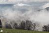 Brumes (Ben Mouleyre Photographie) Tags: auvergne hauteloire brume nuages forêt fix coldefix massifcentral auvergnerhônealpes