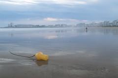Marée basse (patkal51) Tags: vendée vacances marée basse bouée jaune yellow bleu blue sky mare reflet reflexion