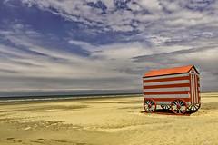 WHILE WAITING , the summer swimmers (jibété61) Tags: cabine plage rouge gris beach mer sea bleu blue red grey belgium summer été swimmer baigneur