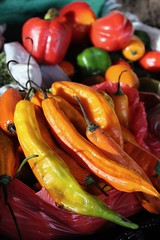 Chillies (hazypaint) Tags: chilli chili market colors peppers hot spice spices