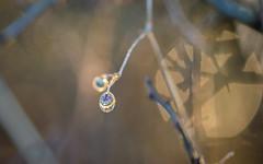 Nature's Fabergé (Emma Varley) Tags: fabergé egg rain seed sunset light bokeh warm colourful nature beautiful precious