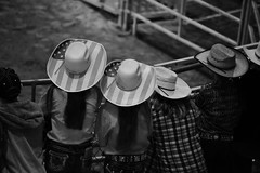 Attending the Rodeo