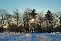 Winter sunset (Eddie Crutchley) Tags: europe england cheshire outdoor nature beauty winter sunlight simplysuperb sunset silhouettes trees shadows snow greatphotographers
