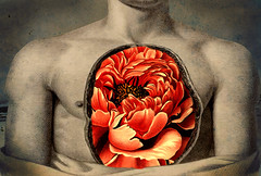 altered: within (hoolia14oh4) Tags: altered collage anatomy chest cavity peony flower passion