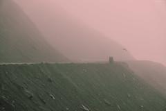 Red Fog (santicabrero) Tags: fiordos fjord fog niebla holidays iceland islandia landscape montaña mountain naturaleza nature paisaje ocean road sonya6000 travel vacaciones valley valle viaje seagull gaviota austurland coast costa virados sonyalpha red rojo