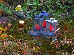 Einen schönen 3. Advent (Sophia-Fatima) Tags: mygarden meingarten naturgarten gardening pond gartenteich wassergarten gartenlaternen gartenleuchten gartendekoration steininsel