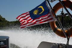 Malaysia-14652.jpg (CitizenOfSeoul) Tags: malaysia 06allesmitwasserundmeer wildlife meer see langkawi andamanensee outdoor wildlebendetiere pulaulangkawi animal