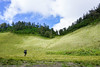 teletubbies hill and field (sydeen) Tags: hill view travel nature landscape background beautiful green sky teletubbies mountain indonesia natural desa grass blue white summer outdoor scenery grassy bukit meadow hiker walk fog cloud field tree