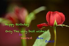 Happy Birthday Dear Jasu (Zahidur Rahman (Thanks for the Favs, comments and ) Tags: happy birthday dear happybirthdaydear wishes greetings expression