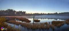 Dwingelderveld! (nsiepelbakker) Tags: moor dwingeldervald landscapemistymorning cold sunrise omdem1markii zuiko12100mmf40mm outdoor